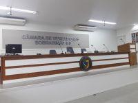 Ordem do Dia da 16ª Sessão Ordinária (29/06/2020)