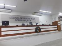 Ordem do Dia da 19ª Sessão Ordinária (24/05/2021)